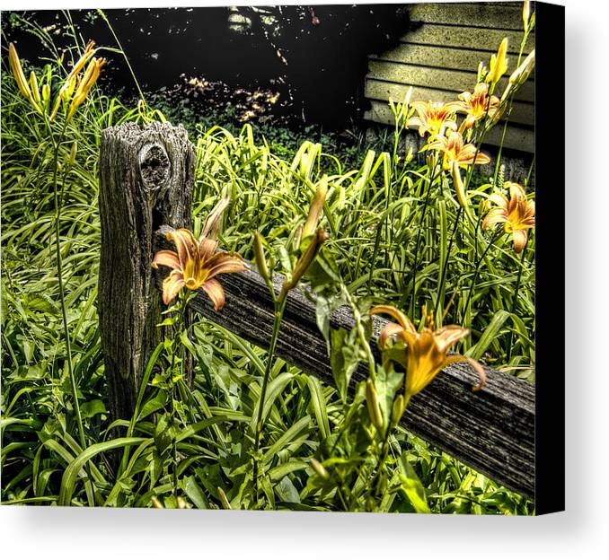 Fence Canvas Print featuring the photograph Fence And Flowers by Chris Fleming