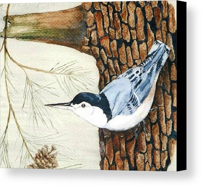 Nuthatch Canvas Print featuring the painting Upside Down by Debra Sandstrom
