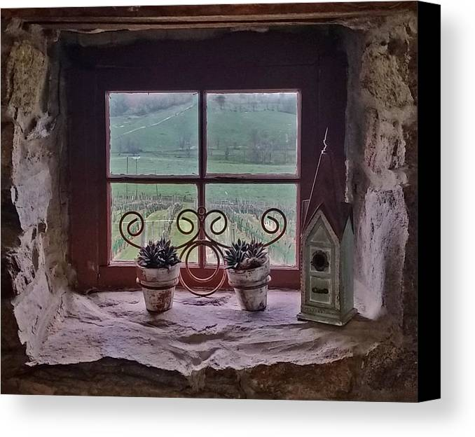 Photography By Suzanne Stout Canvas Print featuring the photograph Ventana De Vina by Suzanne Stout