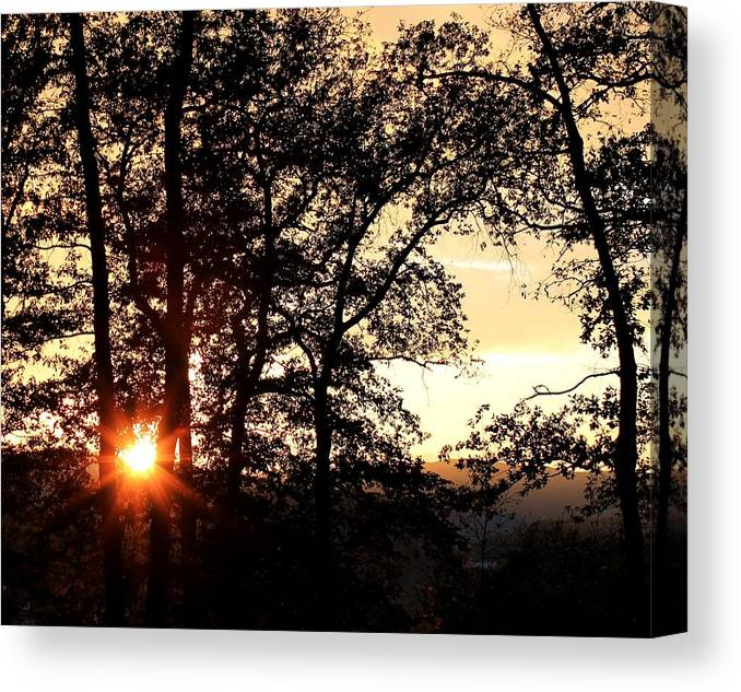Trees Sun Landscape Sunset Canvas Print featuring the photograph Autumn Sunset by Ciprian Saran