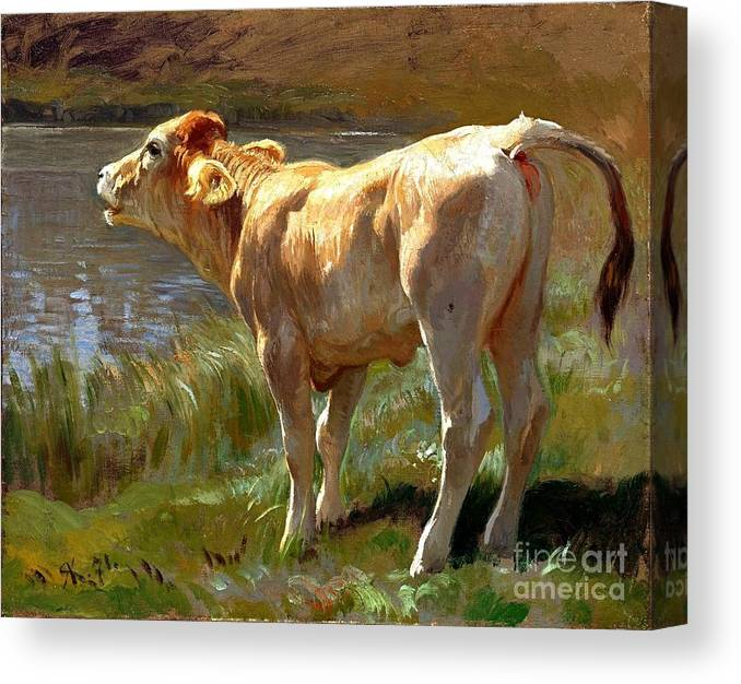 U.s.pd: Pd-art: Reproduction Canvas Print featuring the painting Bellowing Cow by Pg Reproductions