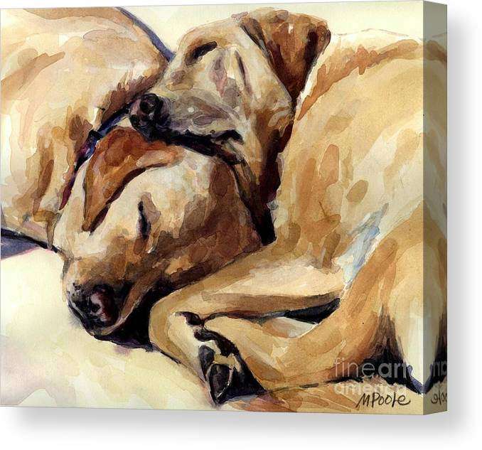 Yellow Labrador Retrievers Canvas Print featuring the painting California Dreamers by Molly Poole