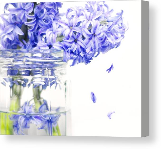 Flowers Canvas Print featuring the photograph Jar Of Purple Hyacinth by Diana Angstadt