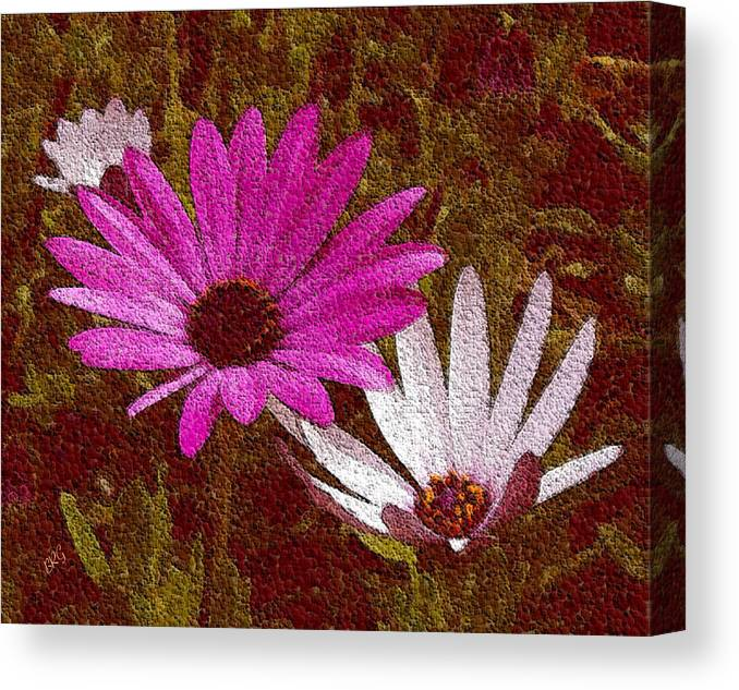 Daisies Canvas Print featuring the photograph Three Flowers On Maroon by Ben and Raisa Gertsberg
