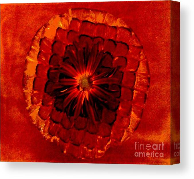 Photo Canvas Print featuring the photograph Daisy Red Abstract by Marsha Heiken
