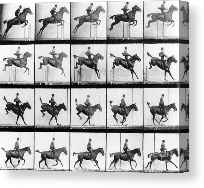 Muybridge Canvas Print featuring the photograph Man And Horse Jumping by Eadweard Muybridge
