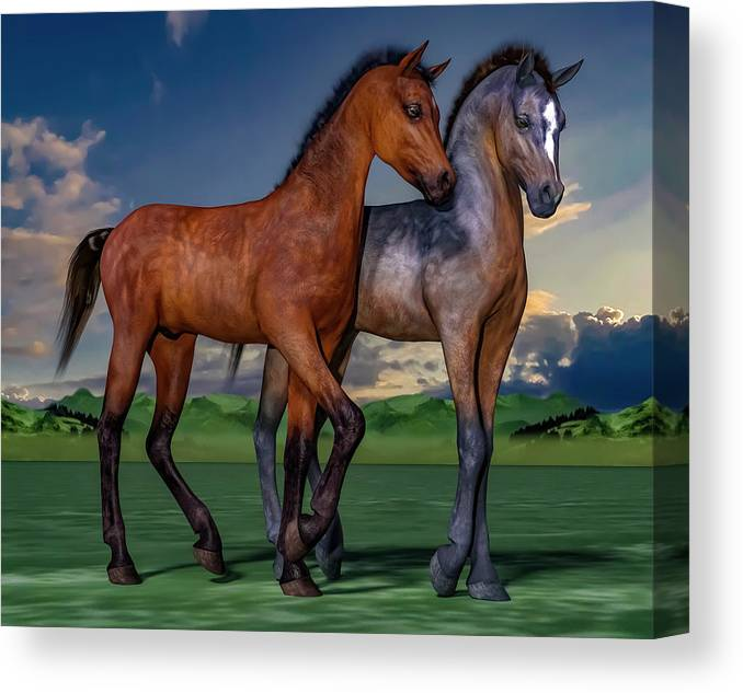 Foals Canvas Print featuring the digital art Young Spirits by Betsy Knapp