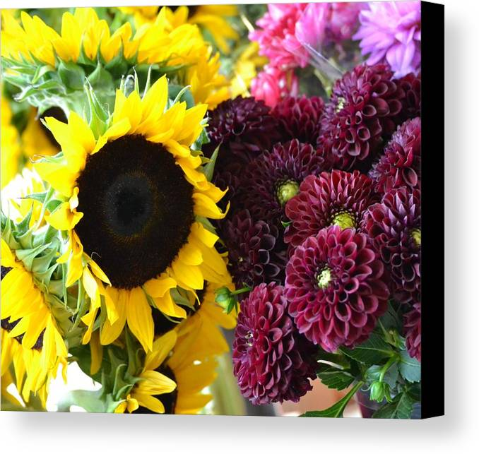 Flowers Canvas Print featuring the photograph Color Splash by Monica Lyons