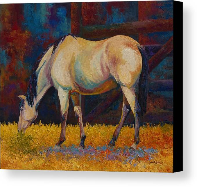 Horses Canvas Print featuring the painting Buckskin by Marion Rose