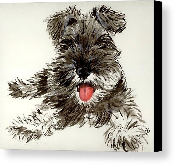 Schnauzer Canvas Print featuring the painting Ding by Carol Blackhurst