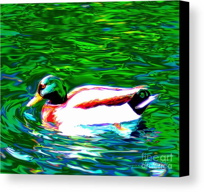 Duck Canvas Print featuring the painting Duck by Everett White