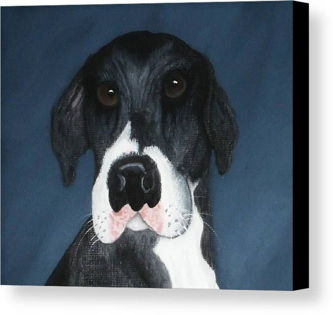 Great Danes Canvas Print featuring the painting Kane by Rebecca Fitchett
