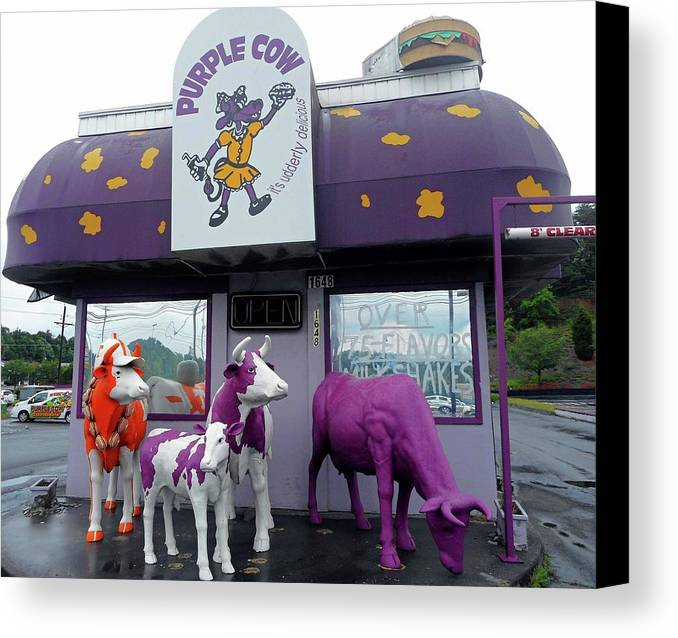 Bristol Canvas Print featuring the photograph Purple Cow 1 by Ron Kandt