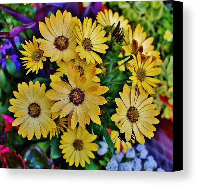 Hudson Valley Flowers Canvas Print featuring the photograph The Art In Flowers 5 by Thomas McGuire