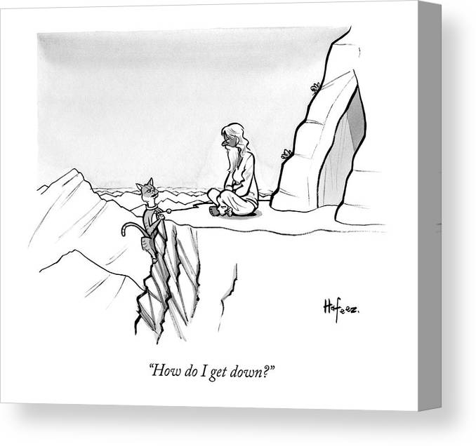 How Do I Get Down? Canvas Print featuring the drawing A Mountain Lion Hangs Off A Cliff by Kaamran Hafeez
