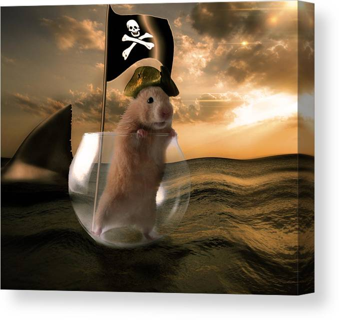 Fantasy Canvas Print featuring the digital art Little Pirate by Lisa Mccullough