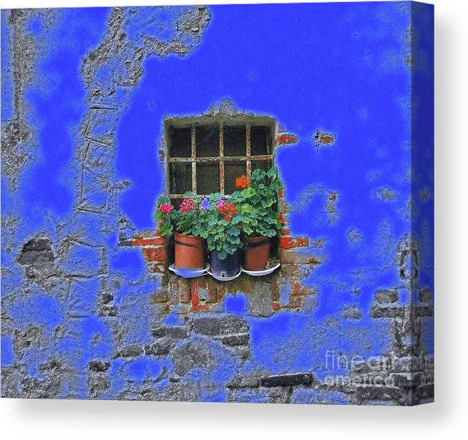 Italy Canvas Print featuring the photograph Italian Wallflowers by Karen Lewis