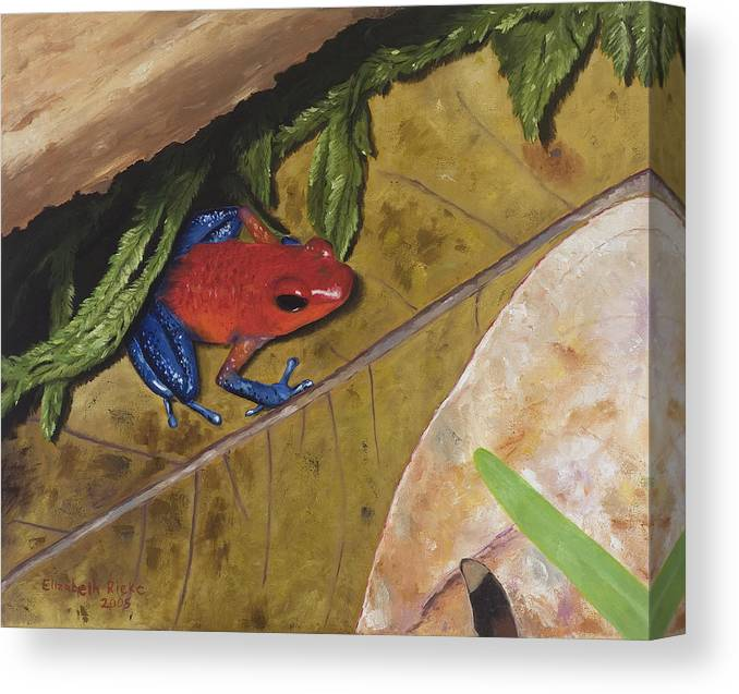 Poison Dart Frog Canvas Print featuring the painting Strawberry Poison Dart Frog by Elizabeth Rieke Hefley