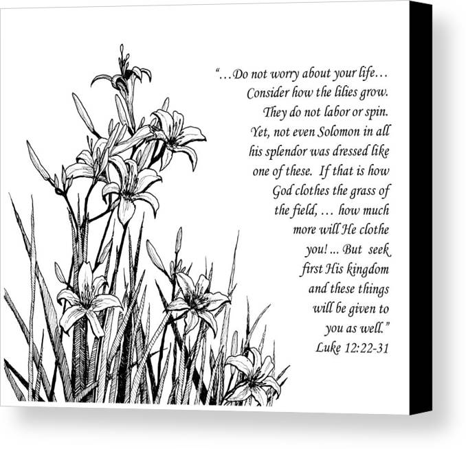 Lilies Canvas Print featuring the drawing Consider How The Lilies Grow by Janet King