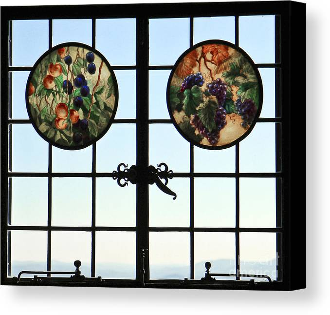 Window Canvas Print featuring the photograph Valley Grapes by Brenda Giasson