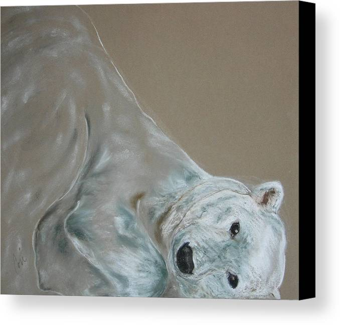 Polar Bear Canvas Print featuring the drawing Arctic Frolic by Cori Solomon