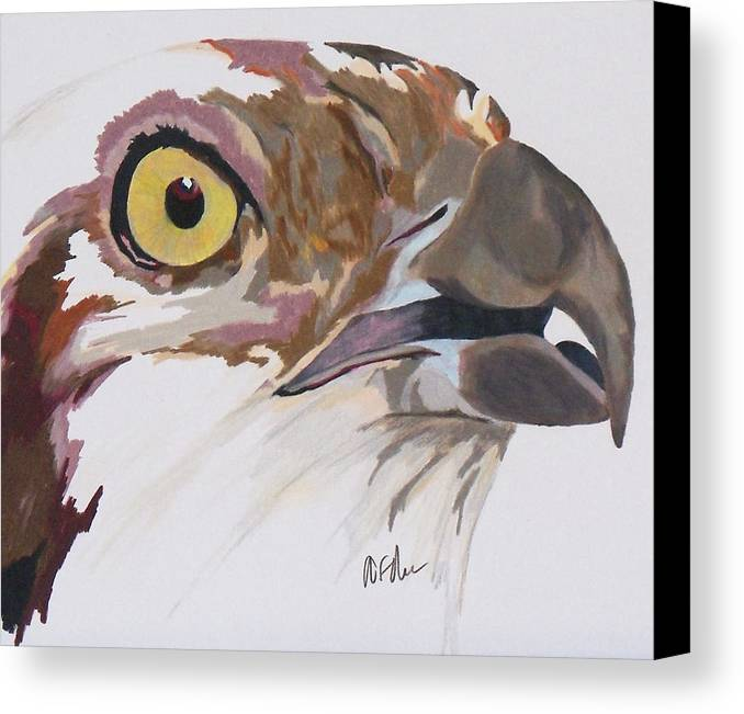 Osprey Canvas Print featuring the painting Bird Of Prey Osprey by Steve Teets