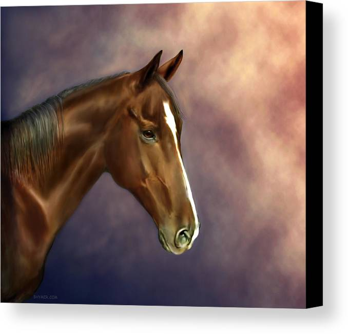 Bhymer Canvas Print featuring the painting Dreamer by Barbara Hymer