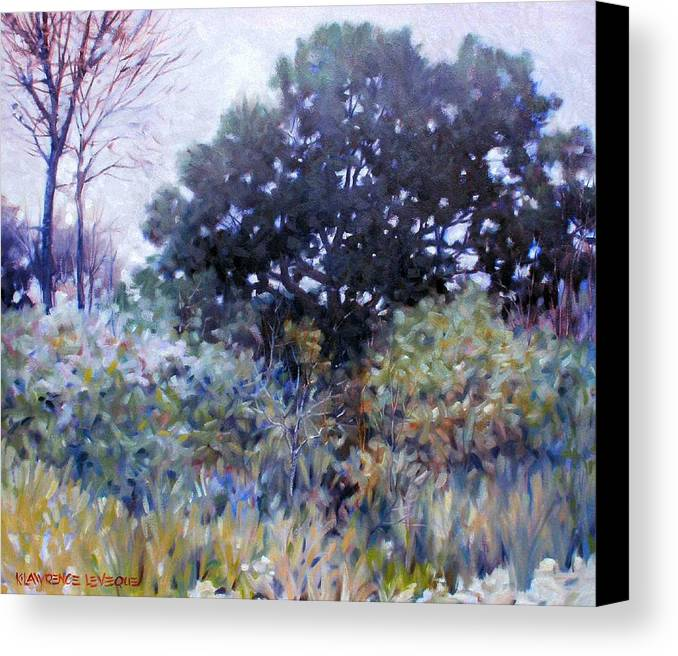 Landscape Canvas Print featuring the painting Empty Lot by Kevin Lawrence Leveque