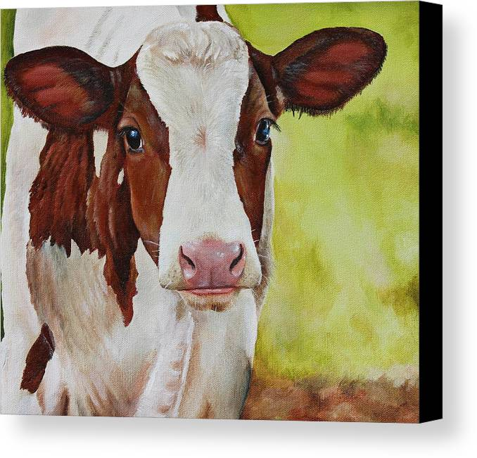 Cow Canvas Print featuring the painting Marigold by Laura Carey