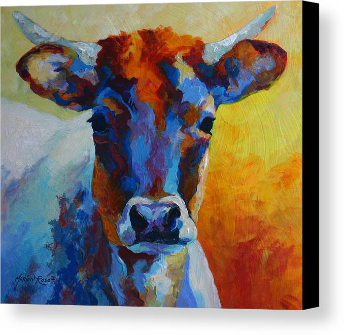 Western Canvas Print featuring the painting Young Blood - Longhorn by Marion Rose