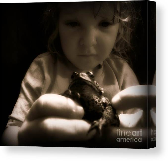 Toad Canvas Print featuring the photograph Curious by Christy Beal