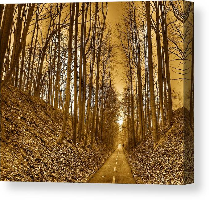 Landscape Canvas Print featuring the photograph Horizon by Mitch Cat
