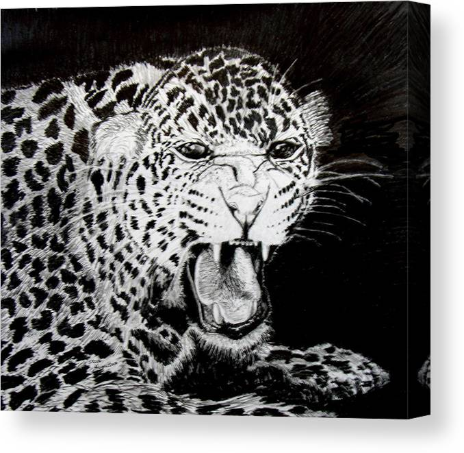 Original Drawing Canvas Print featuring the drawing Jaquar II by Stan Hamilton