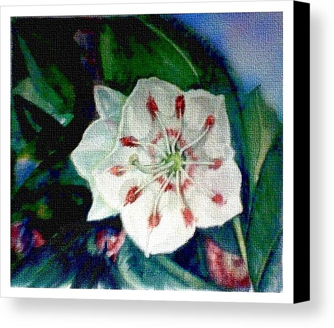 Art Canvas Print featuring the painting Mountain Laurel Blossom Closeup by Elle Smith Fagan