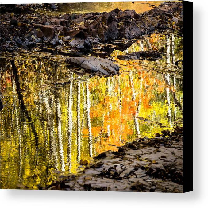 Reflection Autumn autumn Reflection fall Colors Duluth Nature Magical Serene amity Creek Minnesota fleeting Moment Canvas Print featuring the photograph A Moment Of Reflection by Mary Amerman