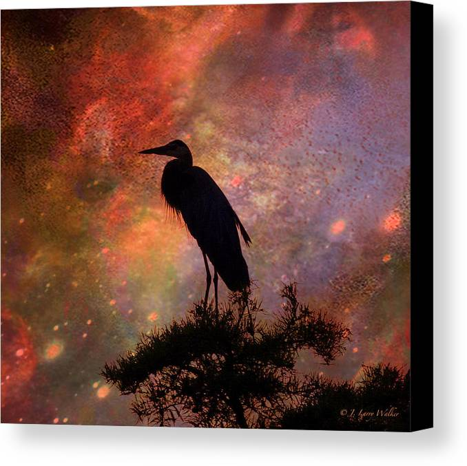 J Larry Walker Canvas Print featuring the digital art Great Blue Heron Viewing The Cosmos by J Larry Walker