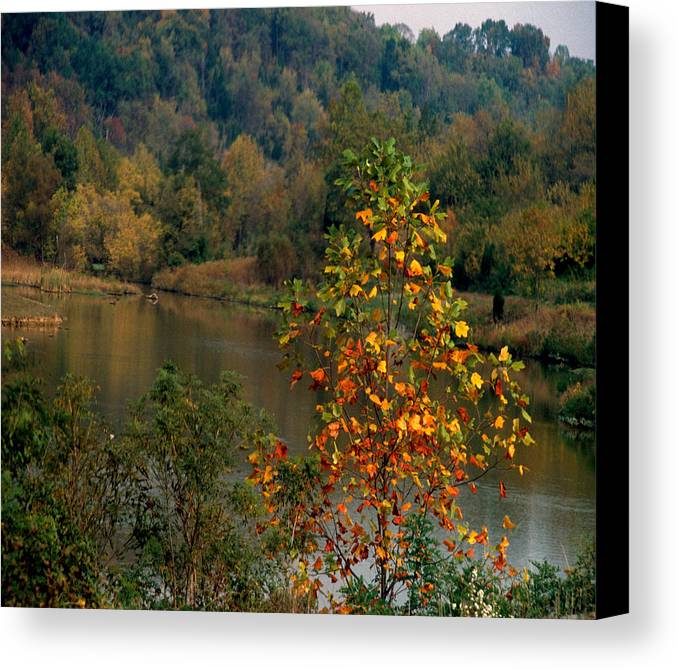 Fall Colors Canvas Print featuring the photograph Autumn Colors by Gary Wonning