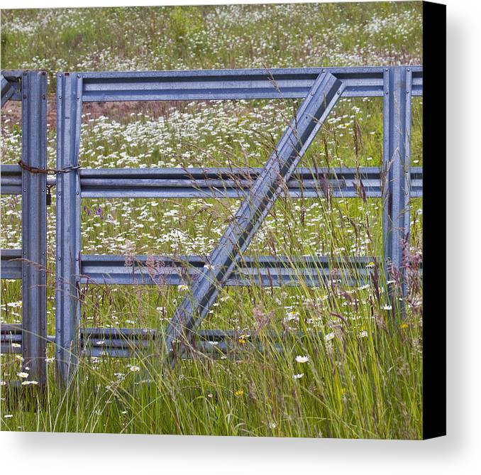 Gate Canvas Print featuring the photograph The Gate by Rebecca Cozart