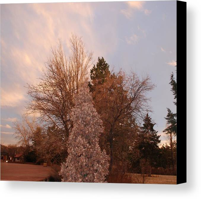 Trees Canvas Print featuring the photograph Trees At The State Capital by Rob Hans