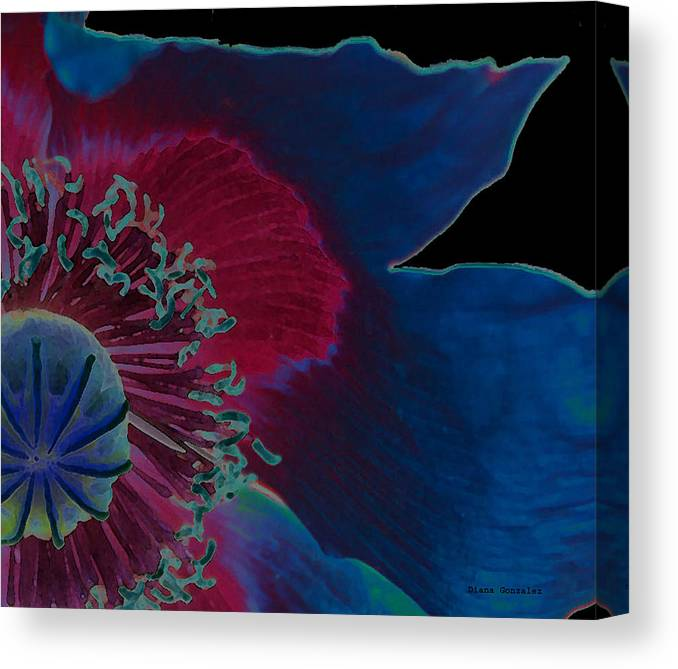Flowers Canvas Print featuring the photograph Vivid by Diana Gonzalez
