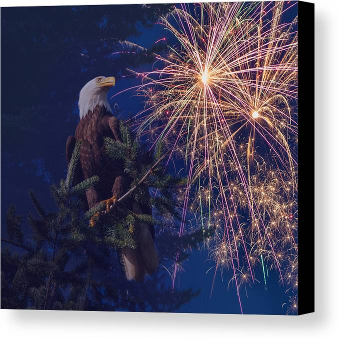 Fireworks Canvas Print featuring the photograph American Pride by Angie Vogel