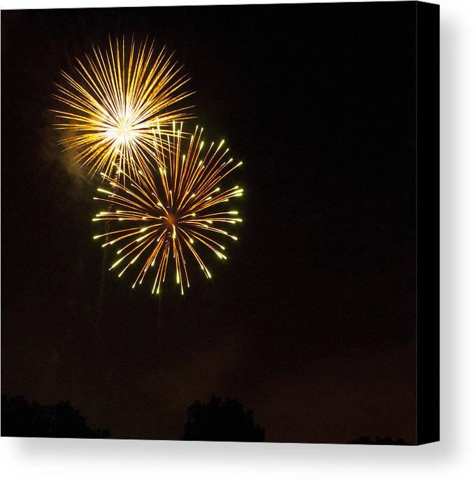 Cities Canvas Print featuring the photograph Detroit Area Fireworks -3 by Paul Cannon