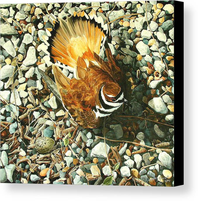 Bird Canvas Print featuring the painting The Protector by Scott Alcorn