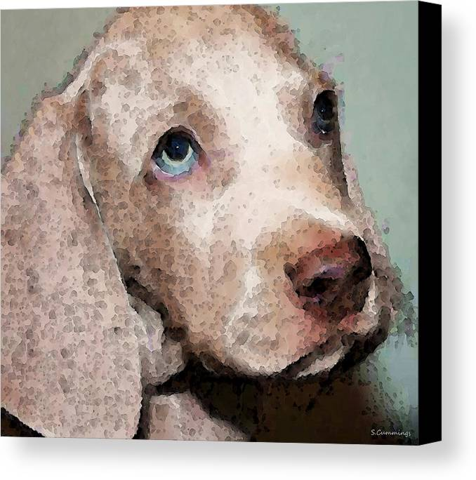 Weimaraner Canvas Print featuring the painting Weimaraner Dog Art - Forgive Me by Sharon Cummings