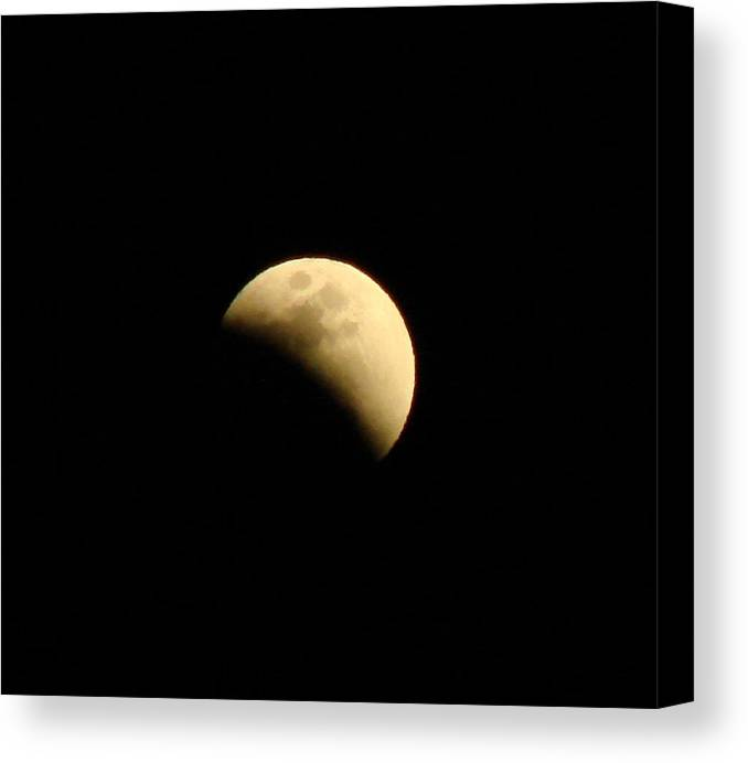 Eclipse Canvas Print featuring the photograph Eclipse by Liz Vernand