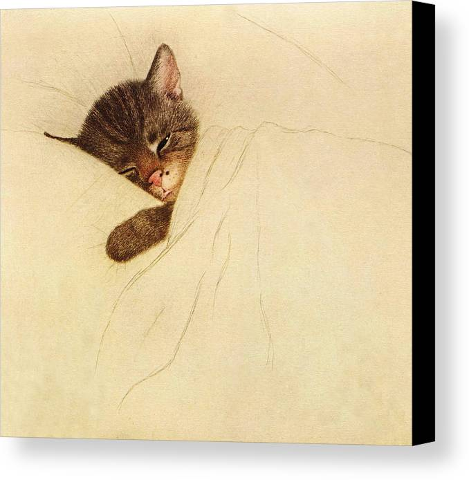 Chessie Canvas Print featuring the drawing Sleep Like A Kitten by Guido Gruenwald