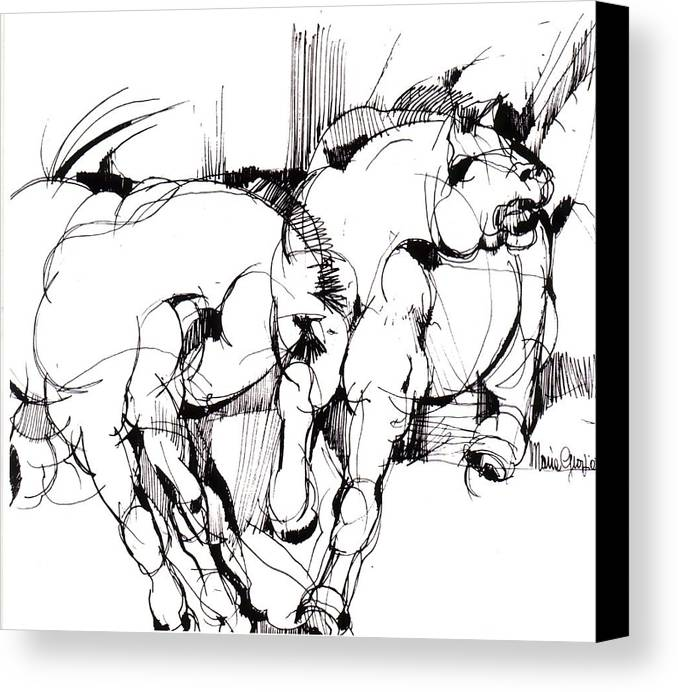Horse Canvas Print featuring the drawing Horses by Maria Grazia Repetto