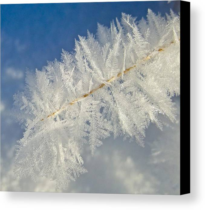 Colorado Canvas Print featuring the photograph Crystal Perfection by Bob Berwyn