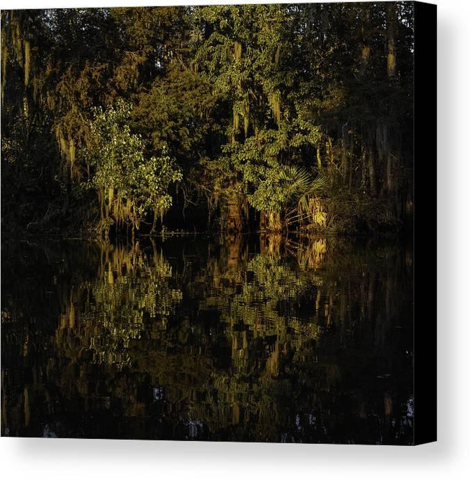 Louisiana Wetlands Canvas Print featuring the photograph Setting Sun In Maurepas Swamp by Richard Waller