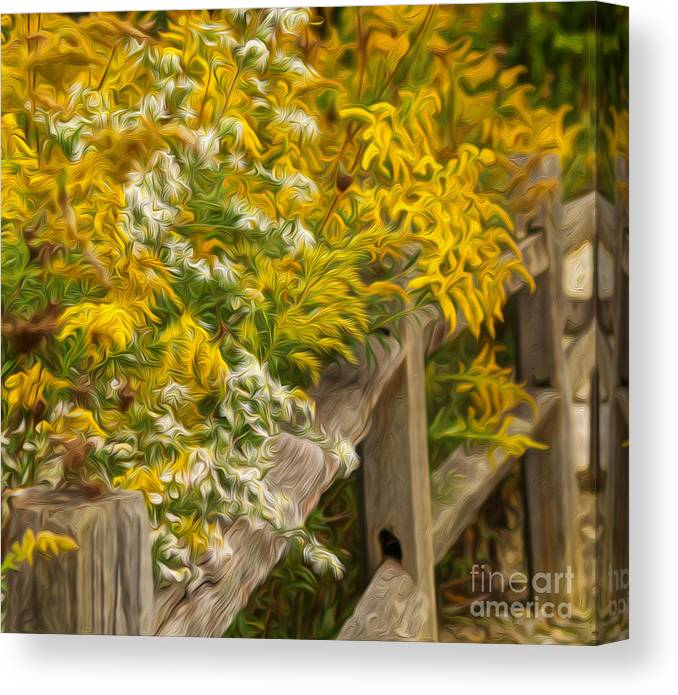Fence Canvas Print featuring the photograph Autumn Fence by Brian Mollenkopf